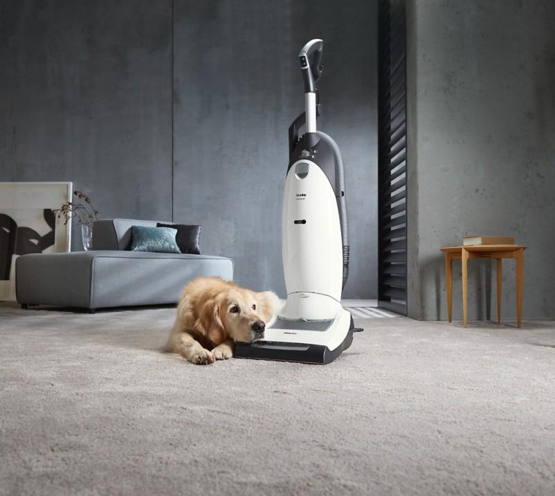 Miele Dynamic U1 Cat & Dog Powerline Vacuum Cleaner